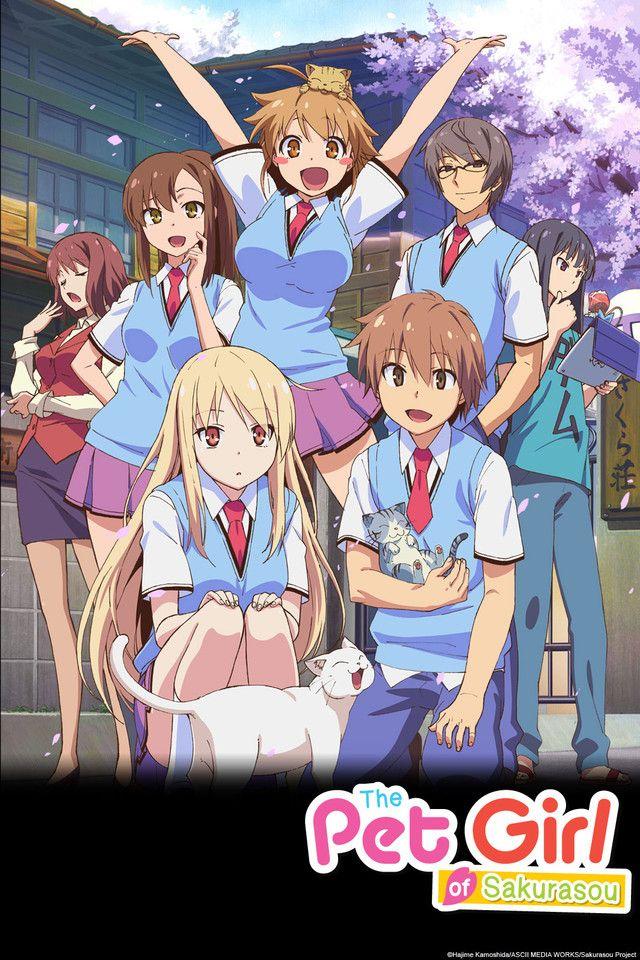 The Pet Girl Of Sakurasou On Crunchyroll Anime Titles Anime Romance Mashiro Shiina