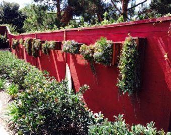 Vertical suculentas maceta Garden por VerticalFlora en Etsy