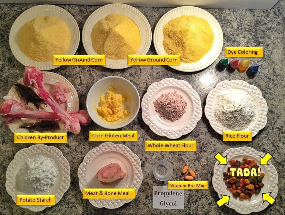 Poor Quality Ingredients Poor Pet Health Great Visual Why Most