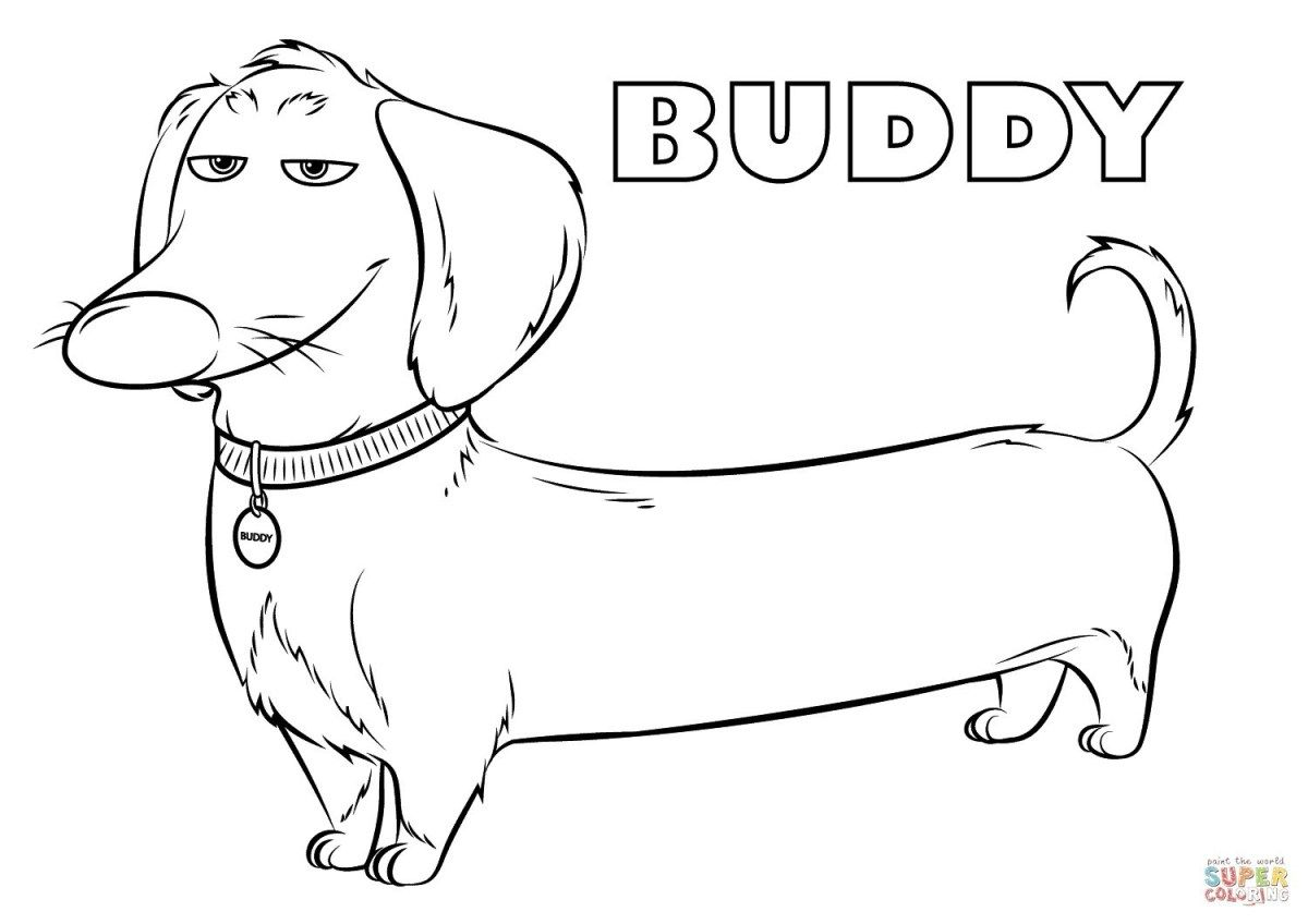 Pet Coloring Pages Preschool Pet Coloring Pages Free Printable Buddy From The Secret Entitlementtrap Com Dog Coloring Book Secret Life Of Pets Dog Coloring Page