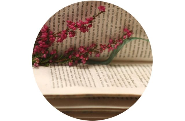 adoro FARM - biblioteca pra todos