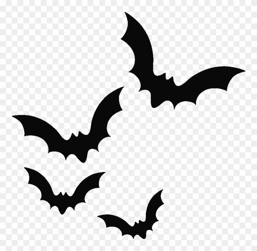 Download Hd Bat Png Possum Magic Clipart Black And White Armadillo Transparent Background Bats Png And Use The Free Clip Art Clip Art Clipart Black And White