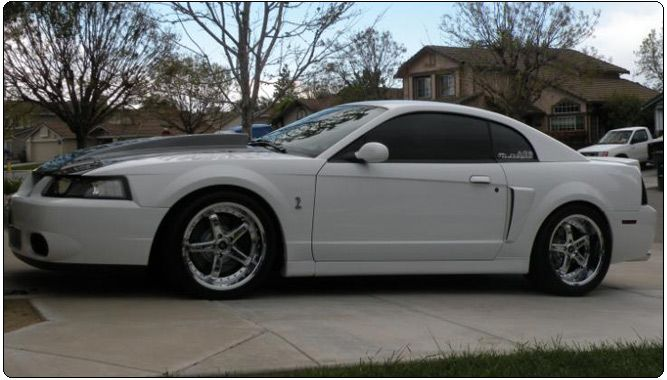 99 04 Mustang Black And White Mustang Godspeed Ultra Deep Dish Wheels And Rims Mustang Mustang Wheels Custom