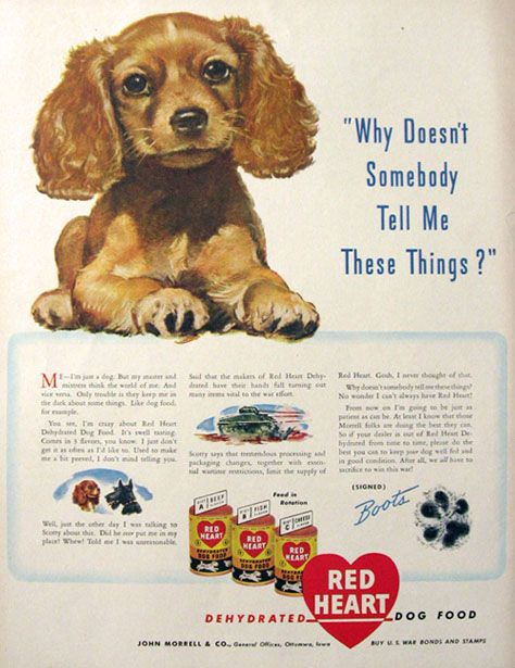 1943 Red Heart Dog Food Ad Cocker Spaniel Puppy Cocker Spaniel
