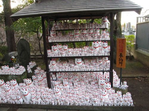 Lucky Cats! Lot's of Lucky Cats!