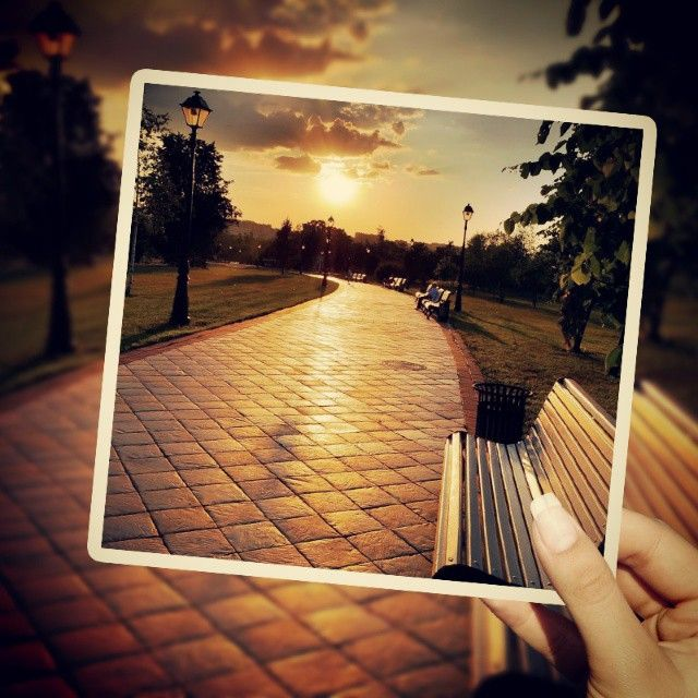 #sunset#sun#tree#road #sunshine #frame#redness #peace#lamp#gussion#blur#hand#cloud #daydie