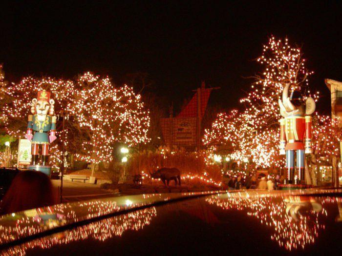 8 Pnc Festival Of Lights Cincinnati Zoo And Botanical