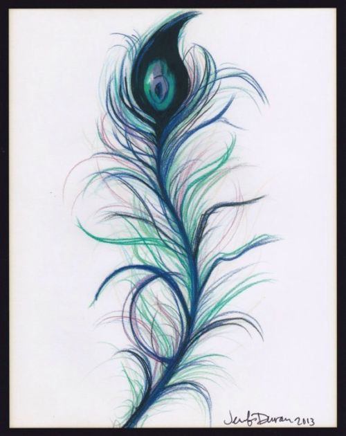 Print peacock feather colored pencil drawing art by jennifer wallpaper