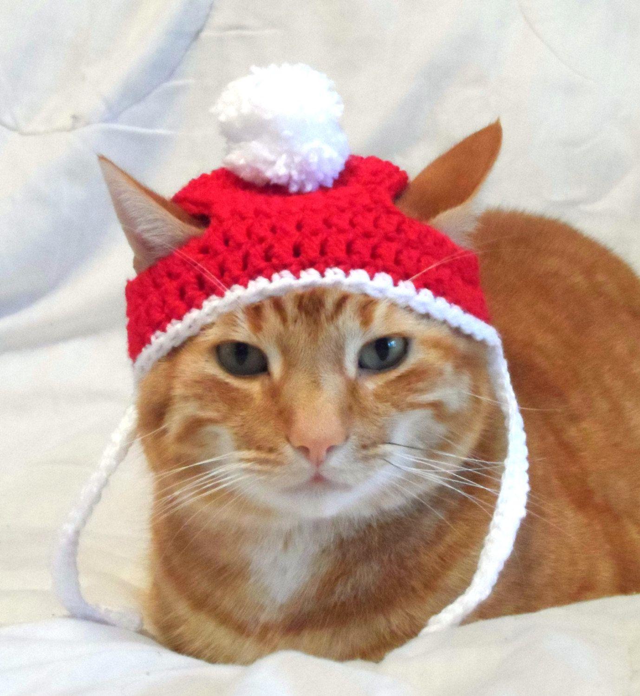 Crochet Cat Hat, Christmas Santa Hat for Cats, Cat