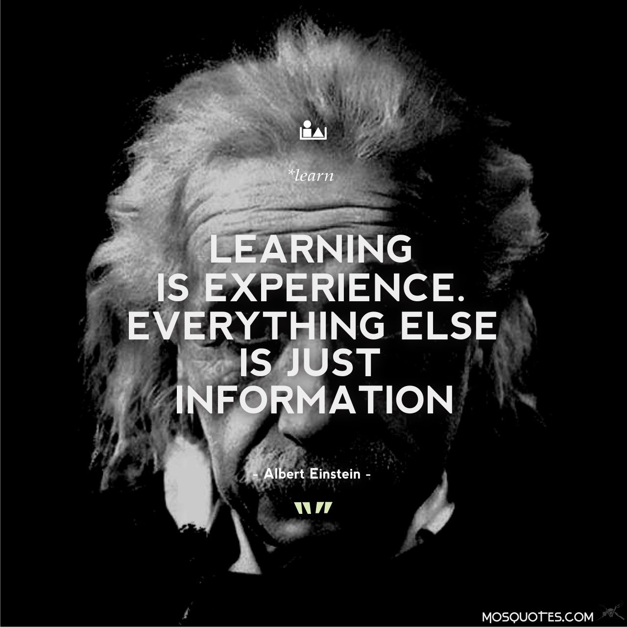Albert Einstein Quotes Learning Is Experience Everything Else Is
