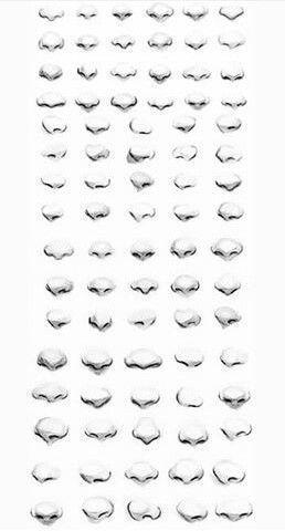 Drawing Noses Cartoon & Drawing Nose