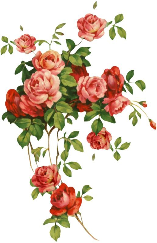 Pin by pl yu on roses pinterest decoupage flowers and floral victorian flowers vintage flowers decoupage ideas decoupage paper flower clipart flower cards paper flowers pretty flowers vintage paper mightylinksfo