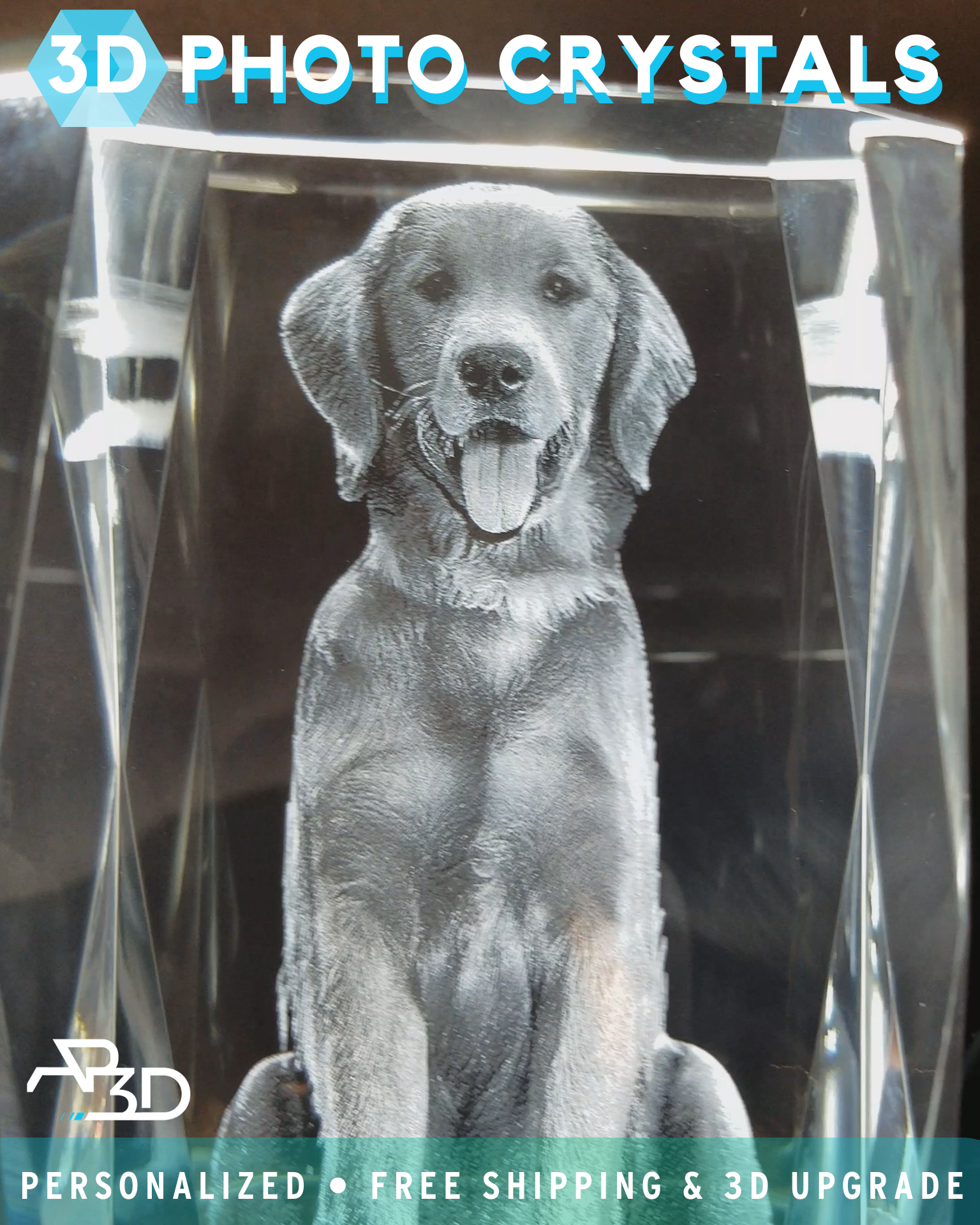 Artpix 3d Coupons 3d Crystal Photo Gift Deals Artpix 3d Video Video In 2020 Cute Dogs And Puppies Pet Remembrance Cute Dogs