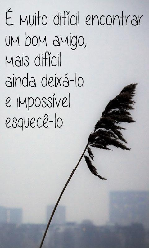 Resultado De Imagen Para Frases En Portugues Brasileño