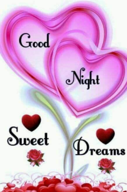 Schlaf gut,Liebling🌙💞