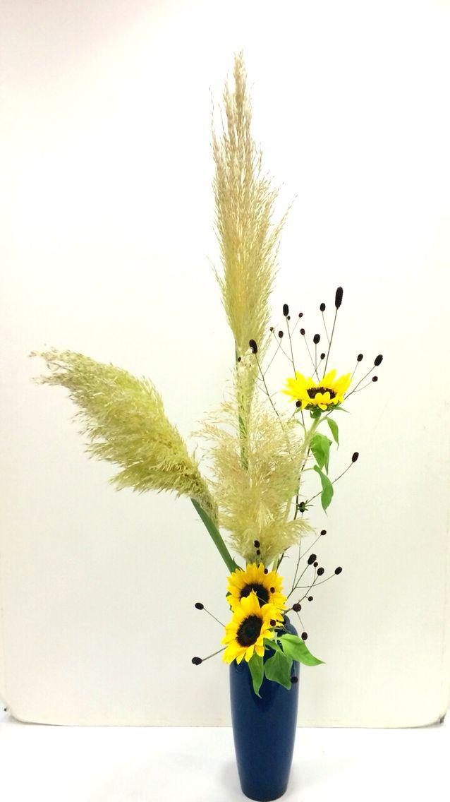 ●Sunflower●