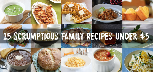 15 Scrumptious Family Recipes Under $5 - Who knew you could make wholesome Belgian waffles, linguine with lemon cream sauce, ranch chicken kabobs, or mac & cheese for $2 - $3? You would be SURPRISED at how cheap some of those dishes are!