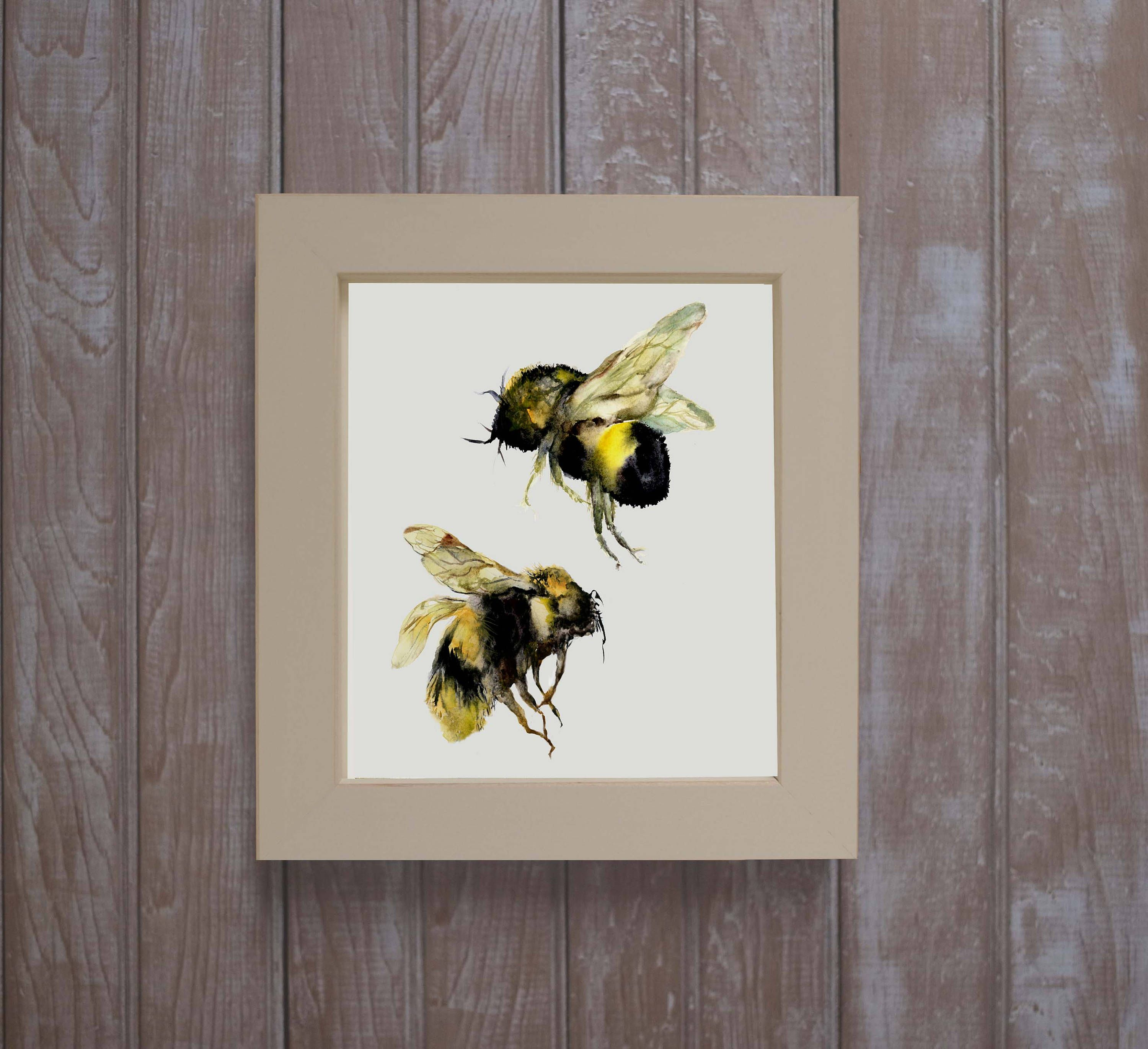 Framed bee print, framed insect watercolors, framed prints, bee ...