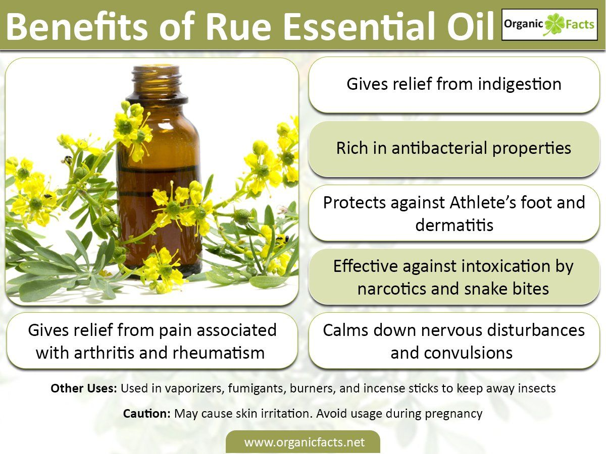 The health benefits of Rue Essential Oil can be attributed