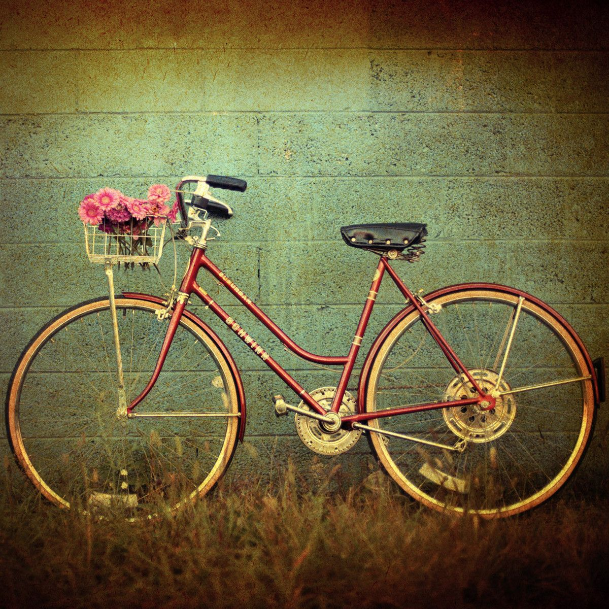 Love this print.  Vintage bikes and the photography style.  Swoon!
