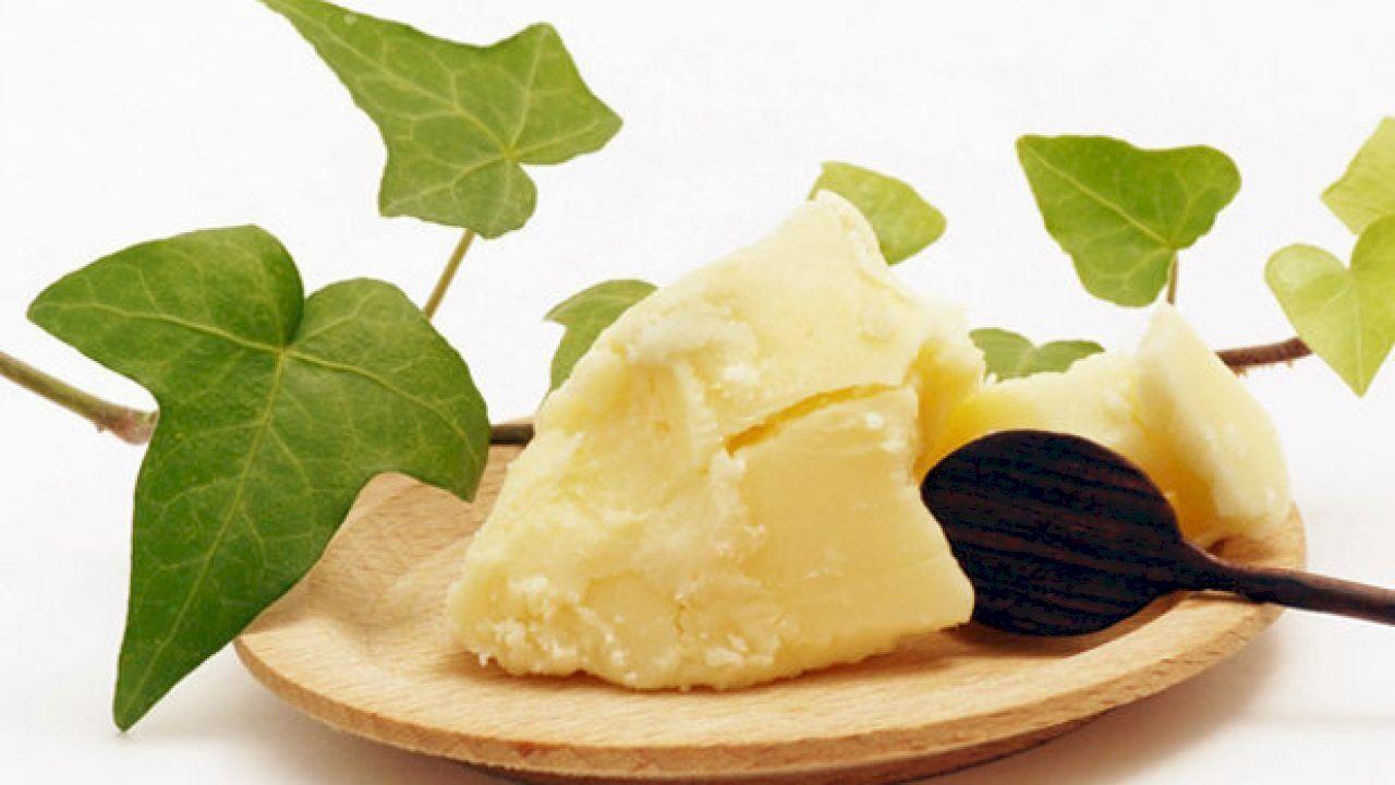 ما فوائد زبدة الكاكاو Shea Butter Benefits Kokum Butter Raw Shea Butter