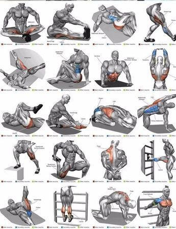 Stretching ist unverzichtbar # fitness666 - #ein #fitness666 #ist #Muss #Stretching - Aktuelle Bilder #bicepsworkout
