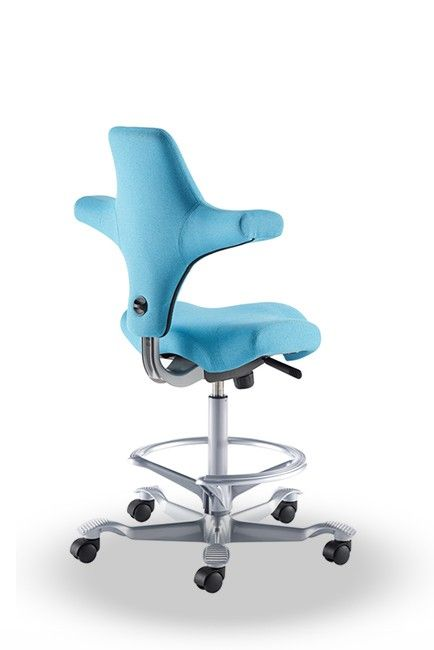 Hag Capisco 8106 Saddle Seat Stool W Back Support Ergonomics Furniture Chair Ergonomic Office Chair
