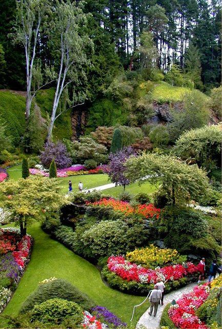 Butchart gardens victoria b c jardines pinterest for Jardines butchart