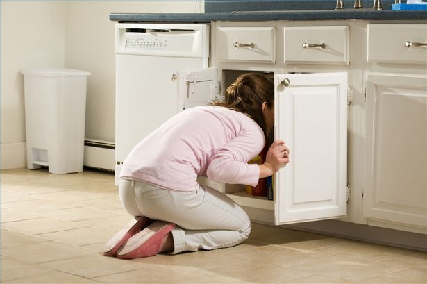 go hide in the cabinet | Kitchen cupboards paint, Kitchen ...