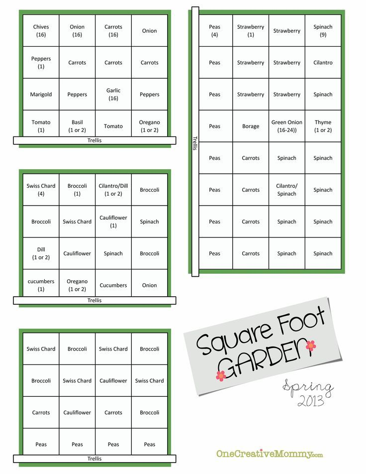 Square Foot Garden Plans for Spring | Ideas, Squares and Spring