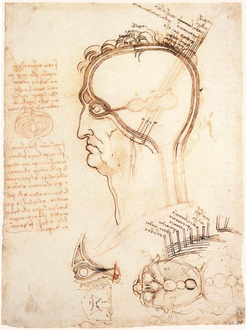 Leonardo da Vinci: The Keen Eye