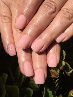 All Acrylic Pink Overlay Over Natural Nails Natural Acrylic Nails Gel Overlay Nails Overlay Nails
