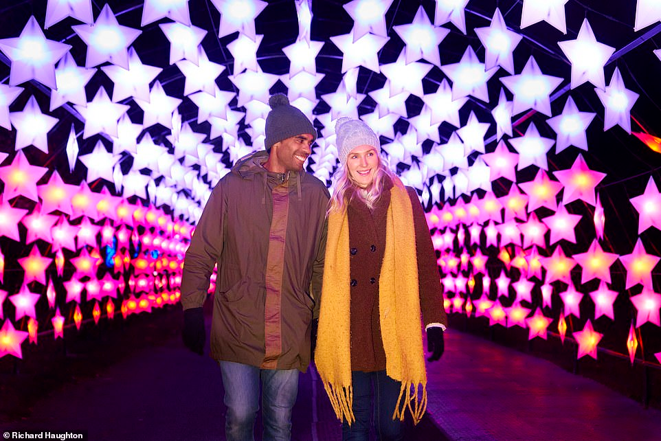 Let It Glow Garden Light Shows Are Giving This Christmas Sparkle Light Show Garden Lighting Kew Gardens