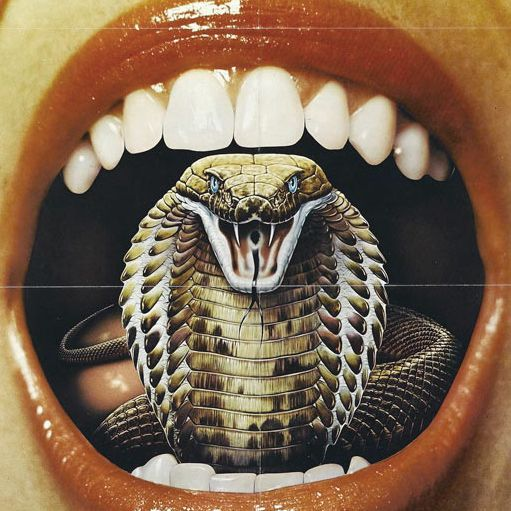 Image result for snake mouth art