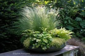R sultat de recherche d 39 images pour composition de jardini re de fleurs id e de jardini re - Idee composition jardiniere exterieure ...