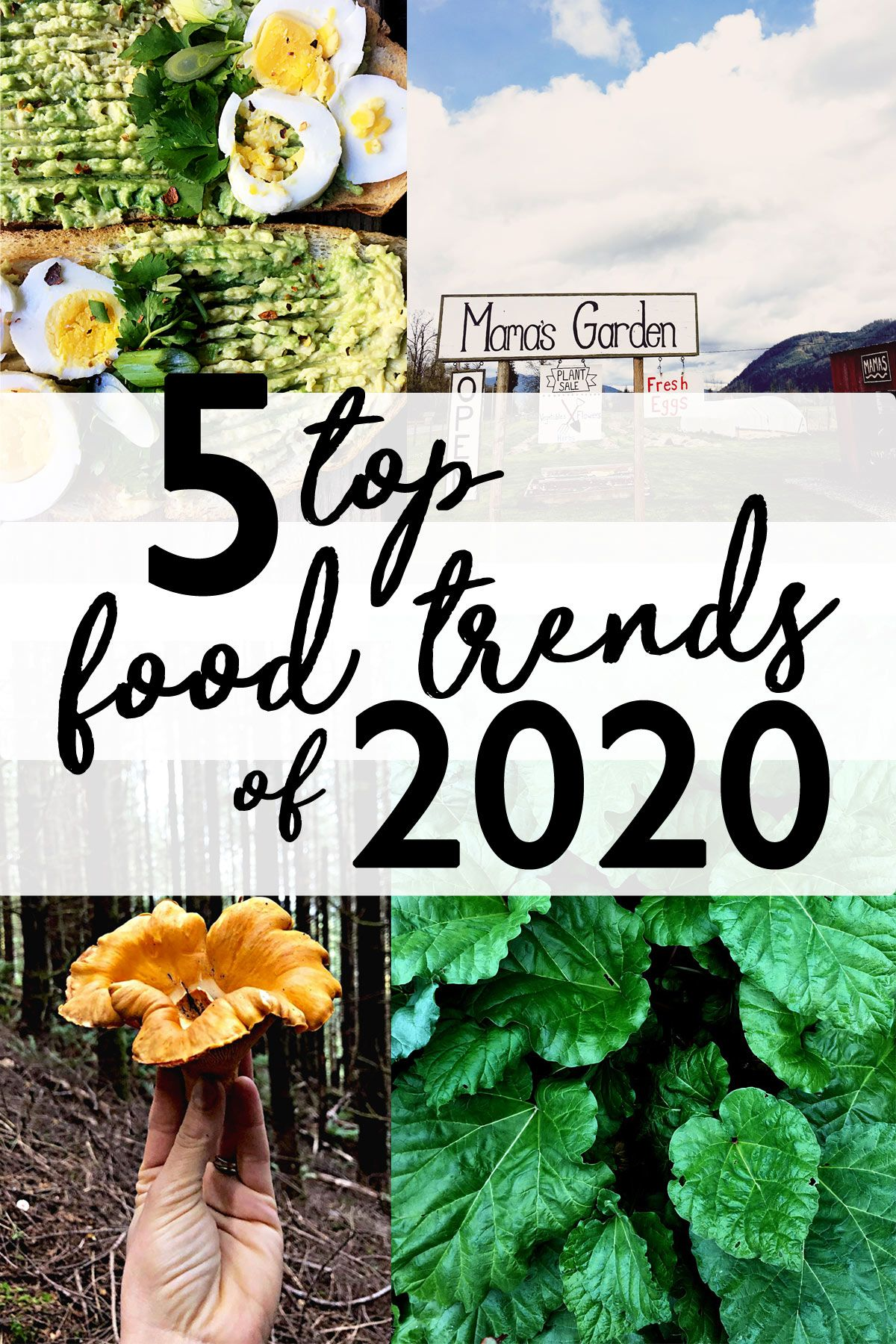 Top 5 Best And Worst Food Trends 2020 In 2020 Food Trends Beautiful Food Styling Best Food Photography