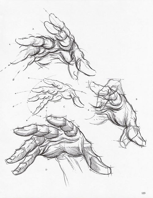 Soullesshusk The Hands From Dynamic Figure Drawing By Burne Hogarth