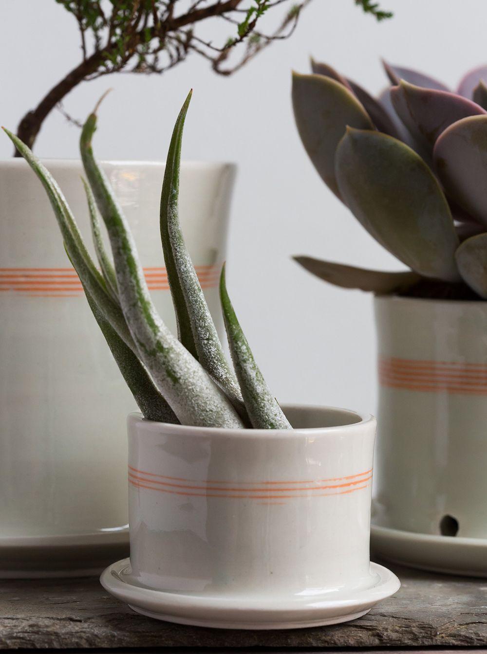 Taylor Ceramics // New York November Market #renegadecraftfair