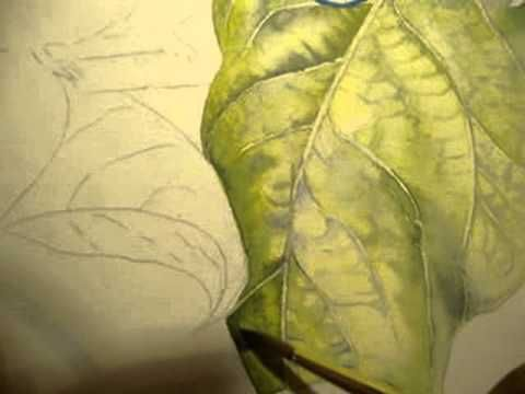 How To Paint Around Veins Of A Leaf In Watercolor Part 3 With