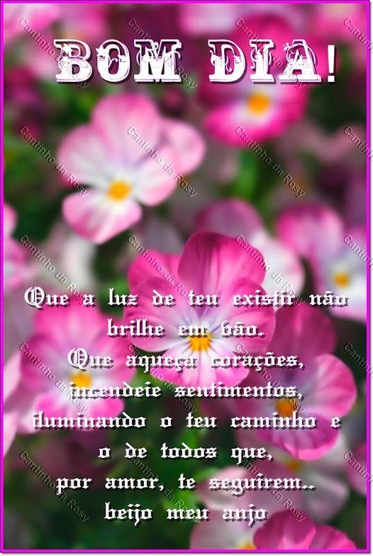 Imagens De Bom Dia Bom Dia Com Flores Bom Dia Com Flores