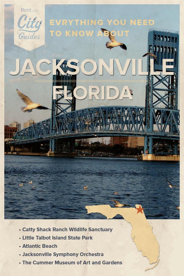 Jacksonville Fl Apartments For Rent 172 Apartments Rent Com Florida Apartments Jacksonville Florida Jacksonville Apartments