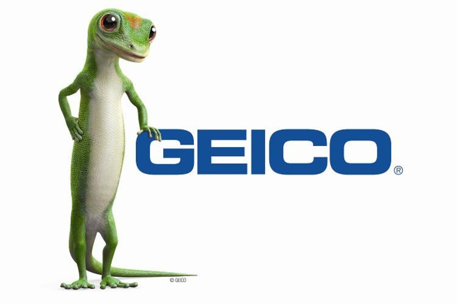 Geico Car Insurance Government Employees Insurance Company Is An