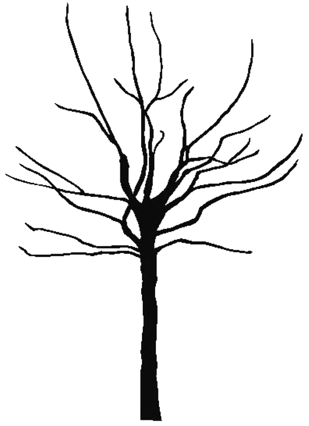 bare tree clipart free large images projects to try pinterest rh pinterest ca bare tree silhouette clip art bare tree silhouette clip art