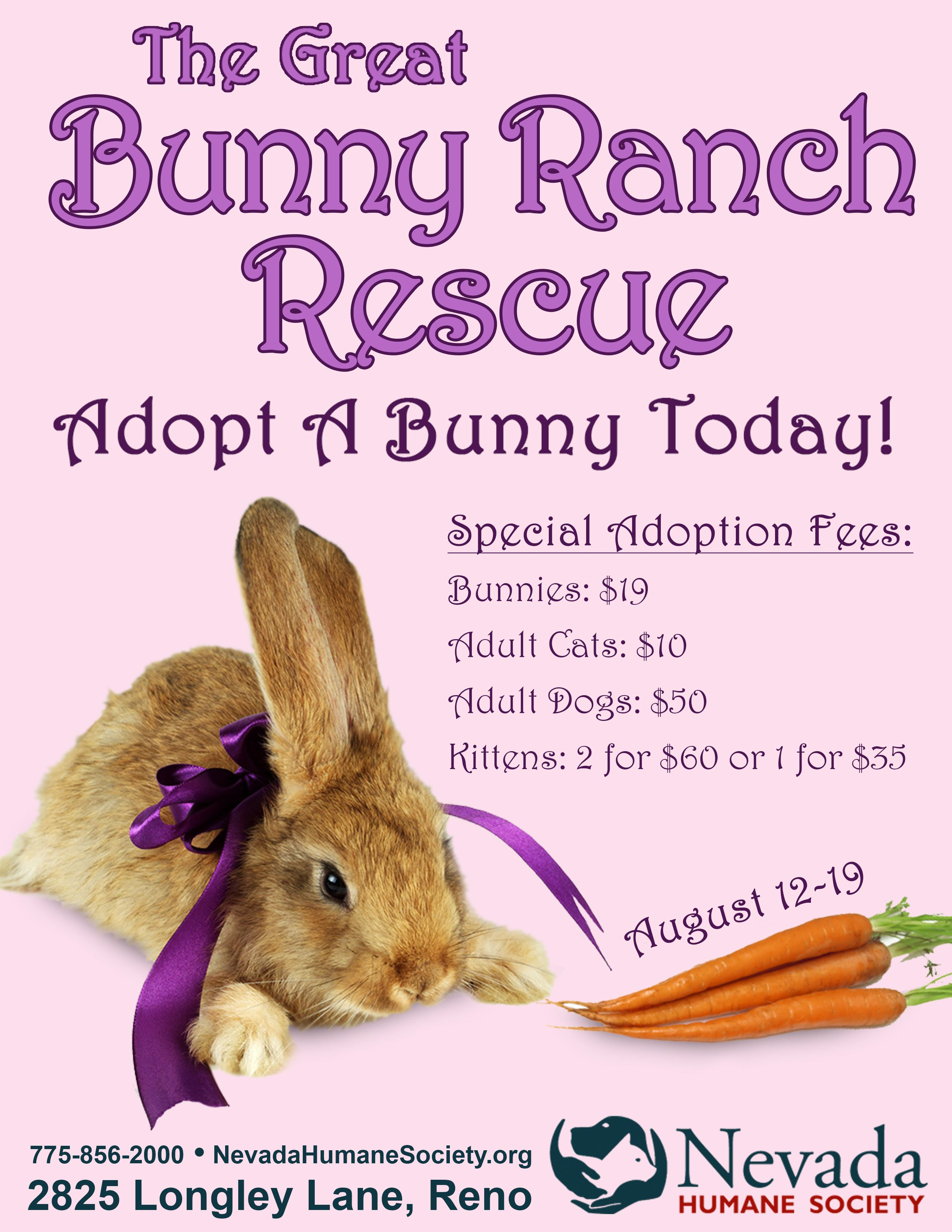 The Great Bunny Ranch Rescue Yup This Is Our Play On The Nevada Brothel And Low And Behold The Moonlight Bunny Ranch Ev Nevada Adopt A Bunny Rabbit Adoption