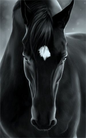 Strength, Beauty and Grace stunning horse art