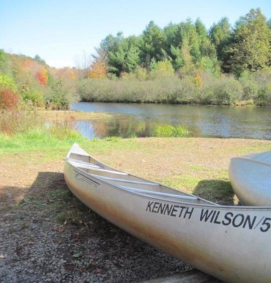 KENNETH L. WILSON, NY