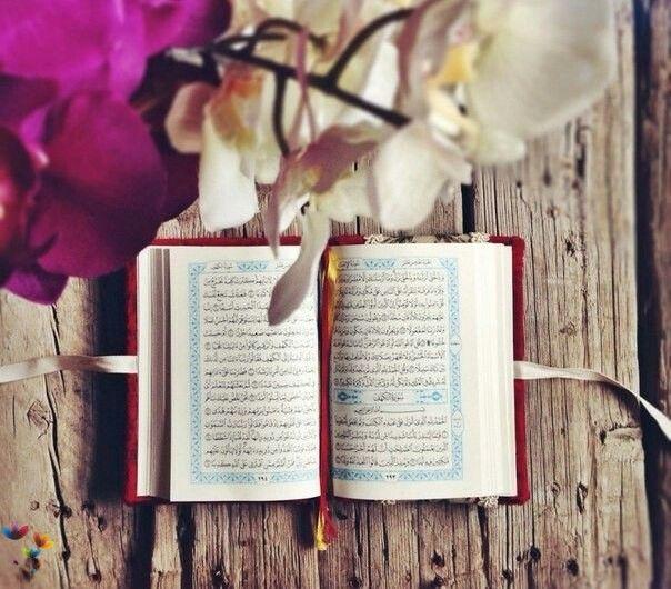 لا تدري لعل الله يحدث بعد ذلك أمرا فيذهب غما ويطرد هما ويزيل حزنا ويسهل أمرا ويقر ب بعيدا Quran Lockscreen Iphone Quotes Quran Wallpaper