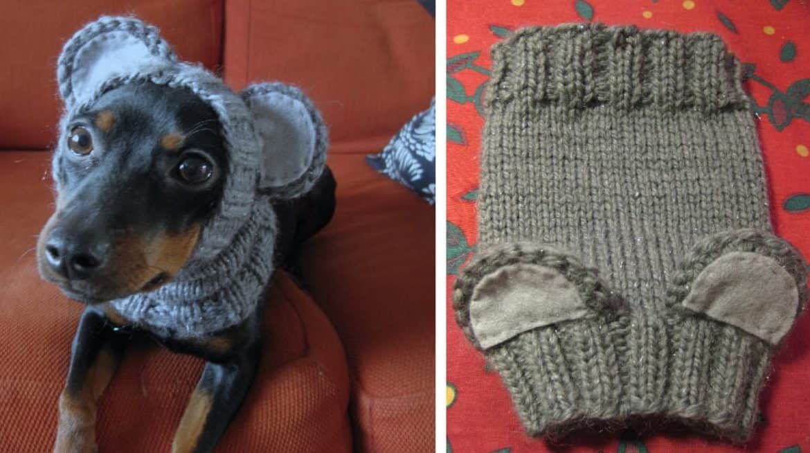 Knitted Dog Hats with Ears Easy Free Patterns   Pinterest   Camas de ...