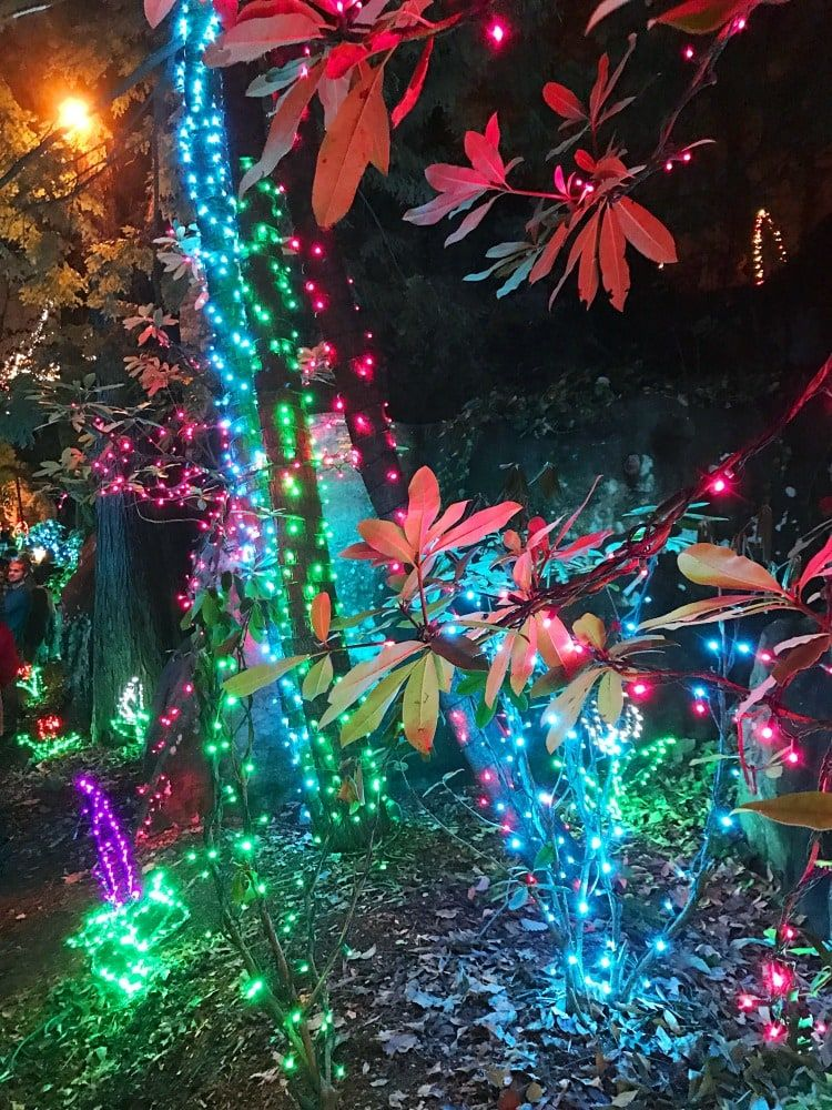 Chattanooga Christmas Lights.Ruby Falls Cave And Waterfall Tours Must See Attraction In