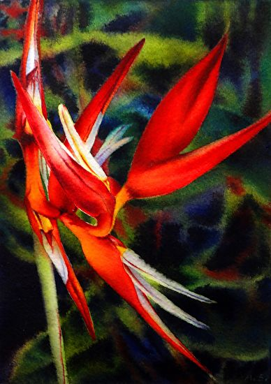 Heliconia Dance by Arena Shawn Watercolor ~ 7 x 5